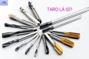 Taro là gì? Cấu tạo của taro ra sao? Taro ứng dụng vào lĩnh vực nào?